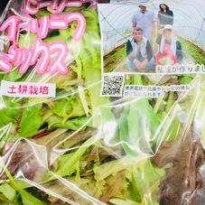 ベビーリーフ 87円(税抜)