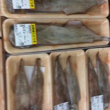 やりいか 498円(税抜)