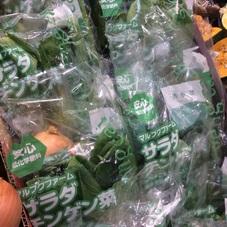 チンゲンサイ 100円(税抜)