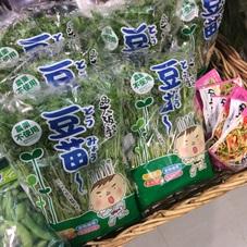 豆苗 100円(税抜)