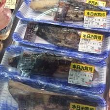 かつおたたき冊 解凍 100円(税抜)