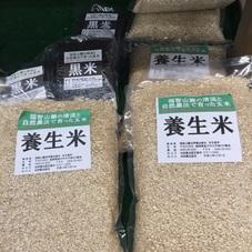 養生米 1,300円(税抜)