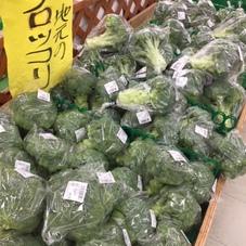 地元産ブロッコリー(産直売り場) 120円