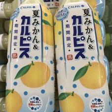 夏みかん &カルピス 88円(税抜)