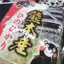 ひのひかり 1,680円(税抜)