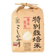熊本こしひかり(巾着) 1,498円(税抜)