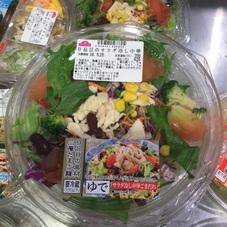 9品目のサラダ冷し中華 398円(税抜)