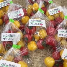 ミニトマト(プチぷよ)産直売り場より 150円