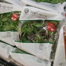 ベビーリーフ 128円(税抜)