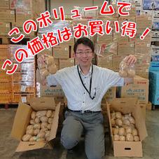 新じゃがいも(L) 99円(税抜)