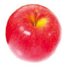 りんご 5ポイントプレゼント