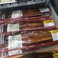 国産うなぎ蒲焼 養殖 1,690円(税抜)