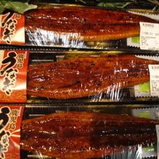 うなぎ蒲焼 2,380円(税抜)