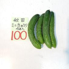 きゅうり 100円