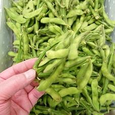 オーガニック枝豆 300円