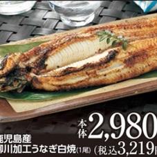 柳川加工うなぎ白焼 2,980円(税抜)