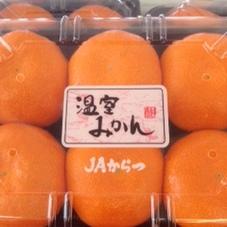 ハウスみかん 395円(税抜)