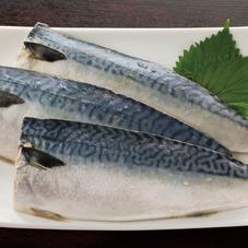 塩さば切身 77円(税抜)