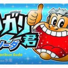 ガリガリ君ソーダ 48円(税抜)