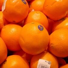 ネーブルオレンジ 80円(税抜)