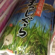 まっしぐら 1,780円(税抜)