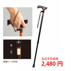 ピッチ杖 E-234 1,980円