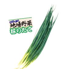 採りたて・青ねぎ 98円(税抜)