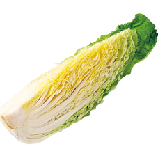 白 菜 68円(税抜)