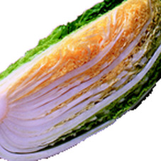 白菜 88円(税抜)