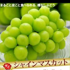 シャインマスカット 880円(税抜)