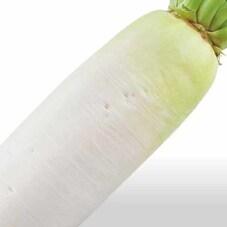 三ツ星野菜のだいこん 158円(税抜)