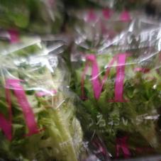 うるおい野菜(モコベールレタス) 198円(税抜)