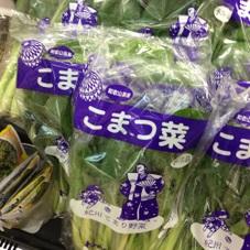 小松菜 100円(税抜)