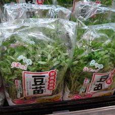 豆苗 98円(税抜)