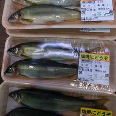 子持ちあゆ 198円(税抜)