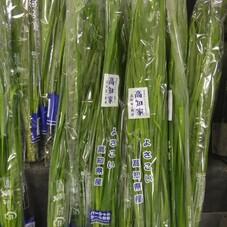 にら 128円(税抜)