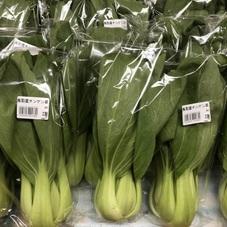 チンゲンサイ 138円(税抜)
