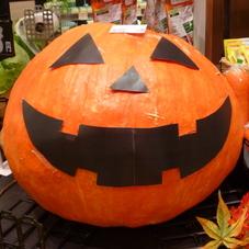 かぼちゃ 5,800円(税抜)