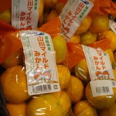 山川マイルドみかん 398円(税抜)