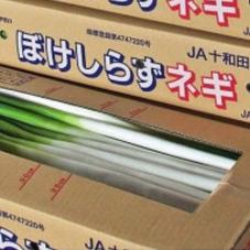 ぼけしらずねぎ Lサイズ 2本 158円(税抜)