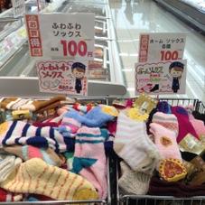 ふわふわソックス ホームソックス各種 100円(税抜)