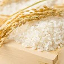 お米全品通常価格から10%OFF 10%引