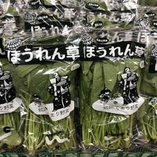 ほうれん草 158円(税抜)