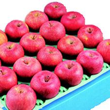 サンふじりんご箱売り・『サンふじギフト申込み用紙』に記載の商品に限り 10%引