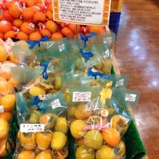 吊るし柿用 680円(税抜)