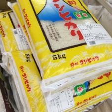 静岡菊川産こしひかり5kg 1,980円(税抜)