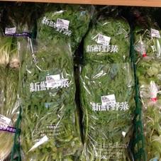 菊菜 100円(税抜)