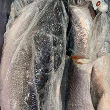 新物!熟成甘塩紅鮭(無頭) 2,980円(税抜)