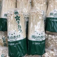 えのき 100円(税抜)