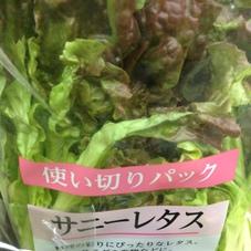 サニーレタス少量 88円(税抜)